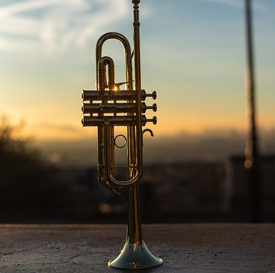 trompette-a-jaminet